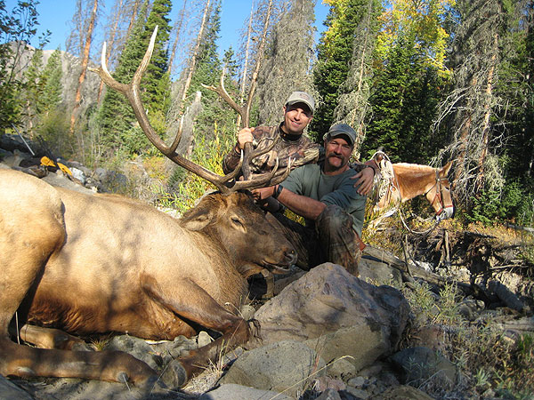 Livingston Outfitting Hunts Wyoming Elk Hunting Mule